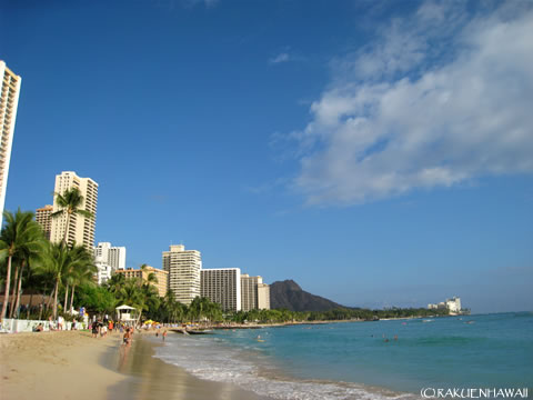 THE ハワイ