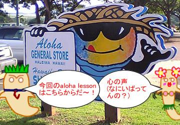 ハワイのクラゲ編 アロハレッスン ワンポイント英会話!